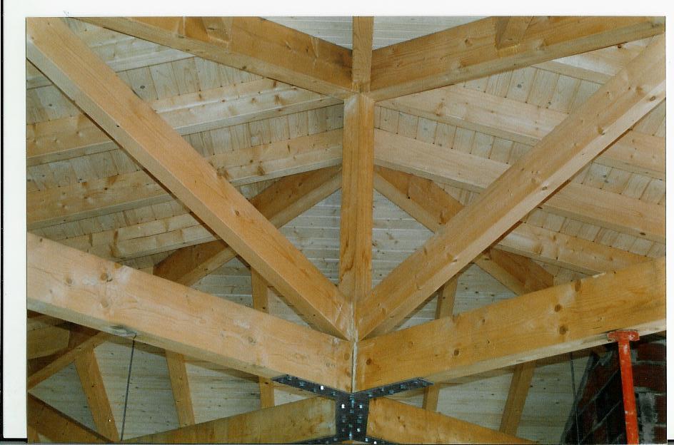 Casas de estructura de madera elegant tecnologa en - Estructura casa madera ...